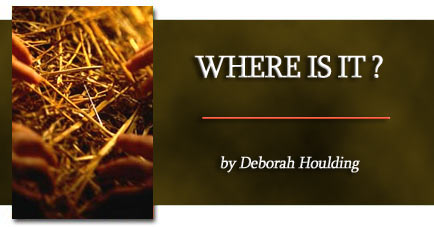 Where is it? By Deborah Houlding